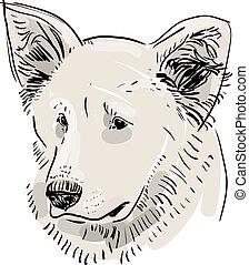 kontur, shepherd., kopf, schwarz, mündung, dog., vektor, skizze, drawing., hintergrund., weißes