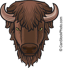 kopf, büffel