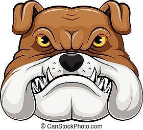 kopf, maskottchen, bulldogge