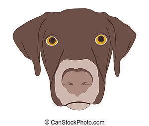 kopf, silhouette, hunden