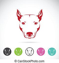 kopf, vektor, bild, hund