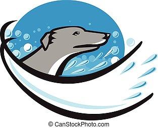 kopf, windhund, hund, wasser, retro, oval, blase