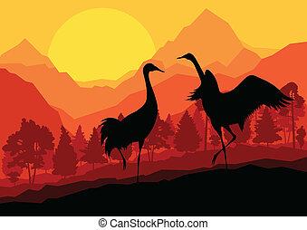 Kranich-Paar in wilder Naturlandschaft, Hintergrundbildvektor