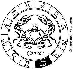 Krebs schwarzweiß.