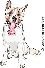 lächelt, skizze, rasse, hund, akita, vektor