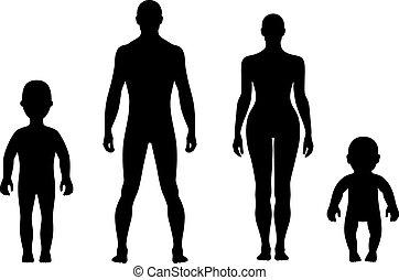 länge, front, voll, menschliche , silhouette