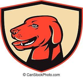 Labrador Golden Retriever Hundekopf Schild Retro.