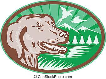 Labrador Retriever jagt Hund Retro