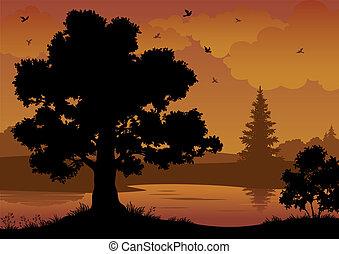Landschaft, Bäume, Fluss und Vögel