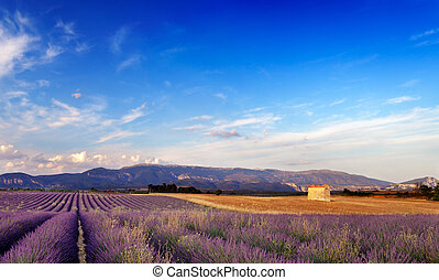 Landschaft in Beweislage, France.