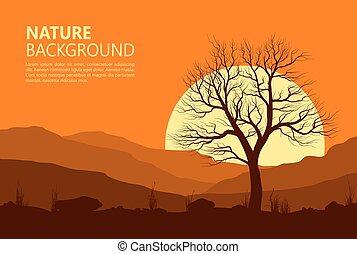 Landschaft mit altem Baum über der Sonne.
