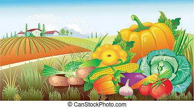 Landschaft mit einer Gruppe Gemüse
