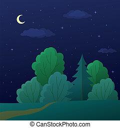 Landschaft, Nachtsommerwald