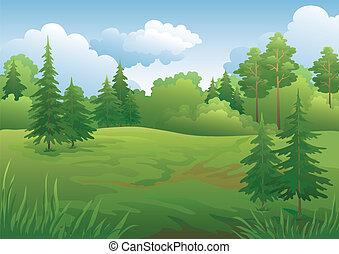 Landschaft, Sommerwald
