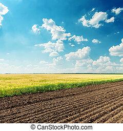 Landwirtschaftsfelder unter tiefblauem Himmel.