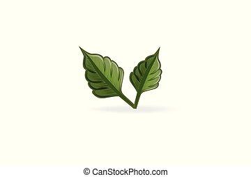 Leaf Health Natur Logo Vektor.