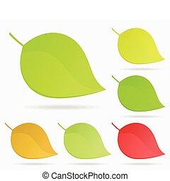 Leaf Icon2