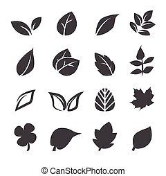 Leaf Ikone.