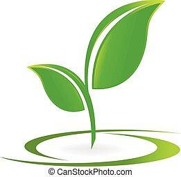 Leafs Gesundheits-Natur-Logo-Vektor.