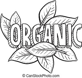 lebensmittel, skizze, organische