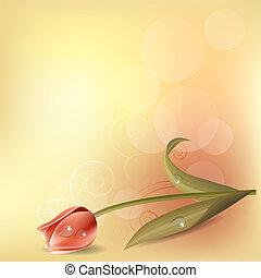 Leichter Background mit rosa Tulpen