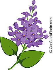 Lilac Filiale
