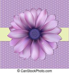 Lilac Hintergrund mit Gerber