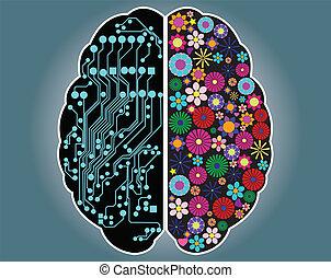 Linke und rechte Seite des Gehirns
