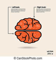 Linkes Gehirn und rechtes Gehirnsymbol, Kreativitätszeichen, Business Symbol, Wissen und Bildung Ikone