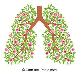Lungen gesund