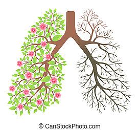 Lungen. Wirkung nach Rauchen und Krankheit