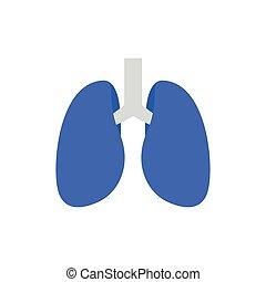 Lungenvektor.