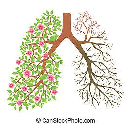 lungs., dis, nach, effekt, qualmende