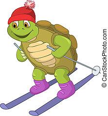 Lustige Schildkröte. Skifahren.