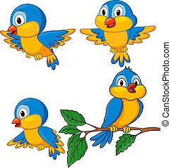 Lustige Vögel Cartoon-Sets