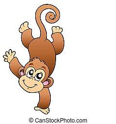 Lustiger, süßer Affe