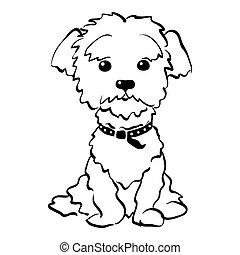 lustiges, skizze, sitzen, hund, vektor, maltesisch