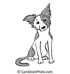 lustiges, skizze, sitzen, hund, vektor, rand- collie