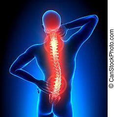 Männliche Rückenschmerzen - Schmerz
