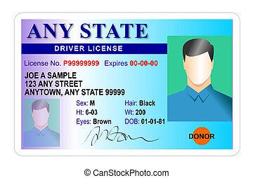 Männlicher Führerschein isoliert