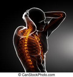 Männlicher Körperrückstandsscan