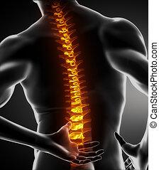 Männlicher Rückenknochenscan.