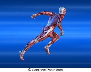 Männlicher Sprinter