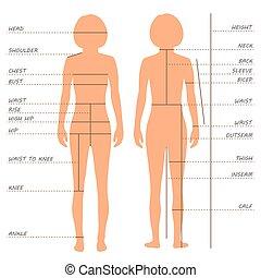 maße, tabelle, größe, koerper