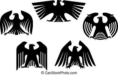 Majestätische und mächtige Adler