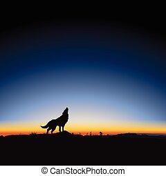 Majestätischer Sonnenaufgang und Wolf.
