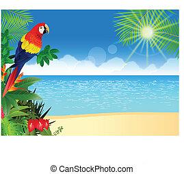 Makkaroni mit tropischer Strand-Brückgroun