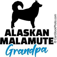malamute, alaskisch, opa, silhouette