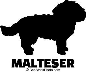 maltesisch, silhouette, schwarz, deutsch
