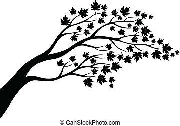 Maple Baum Silhouette.